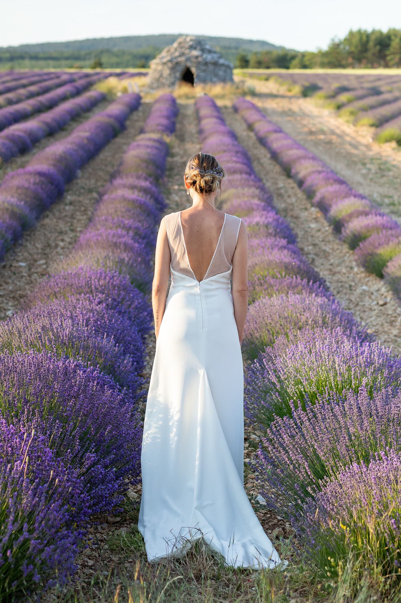 elopement in Provence bride in a lavender field aria