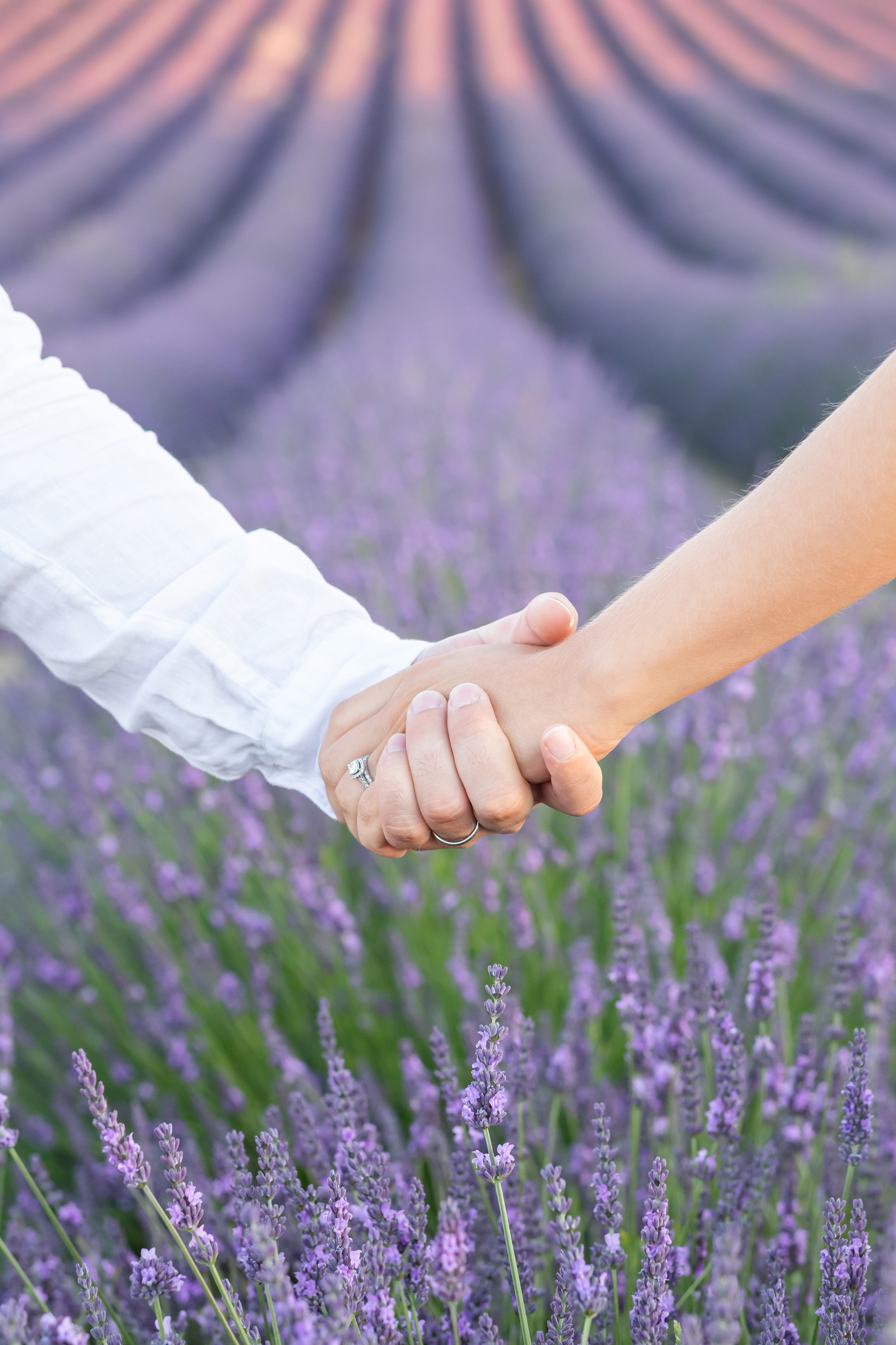 romantic elopement in Provence in lavender fields